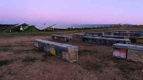 Planta fotovoltaica de Iberdrola en Huelva con colmenas.