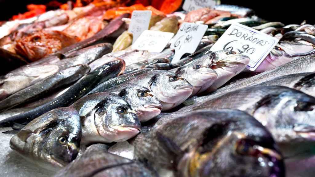 Mostrador de una pescadería.