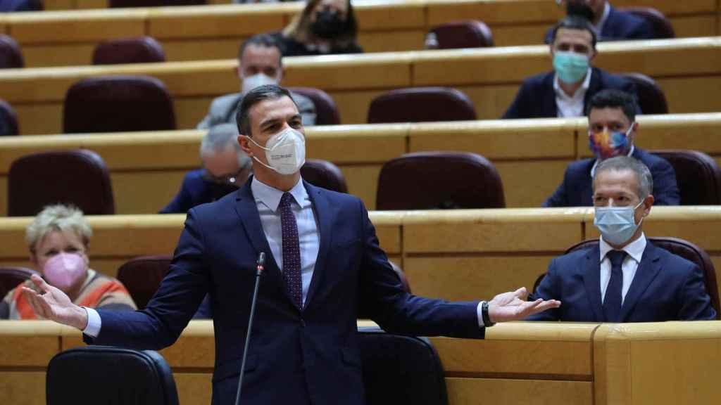 Pedro Sánchez, presidente del Gobierno, en la sesión de control del Senado.