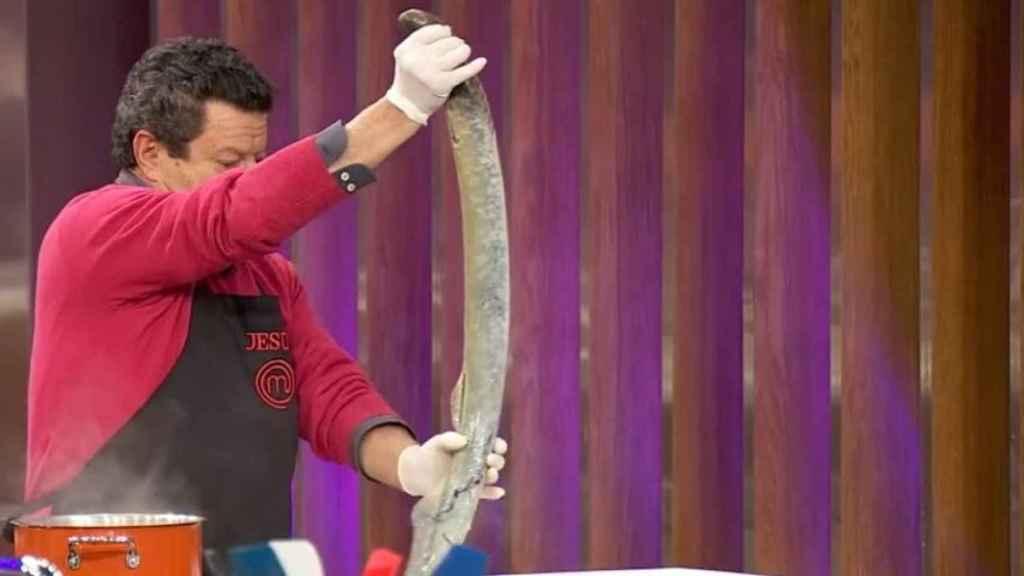 La lamprea suele alcanzar el metro de longitud.