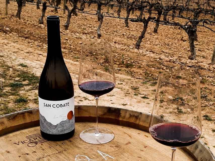La situación del viñedo de San Cobate es única en la Ribera del Duero.