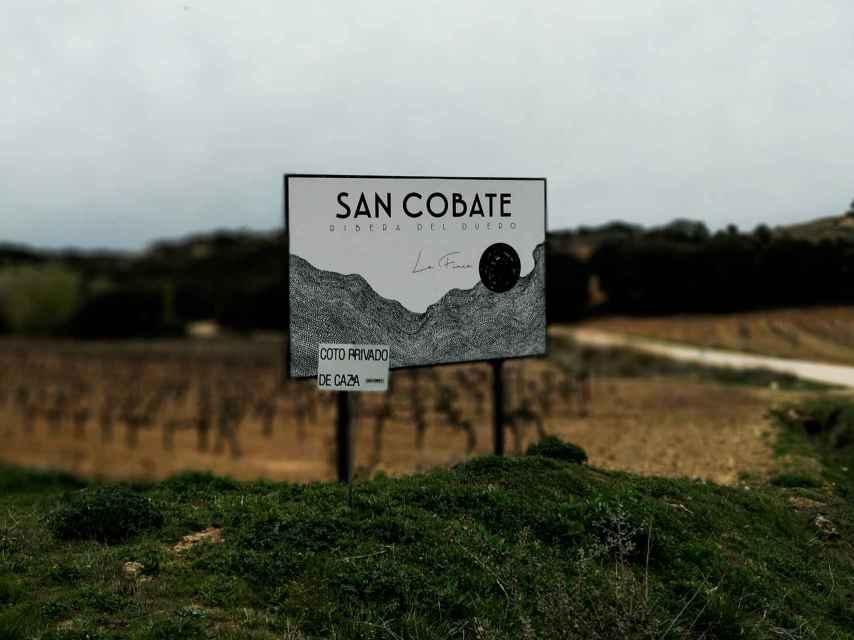 San Cobate, bienvenidos a un viñedo singular.