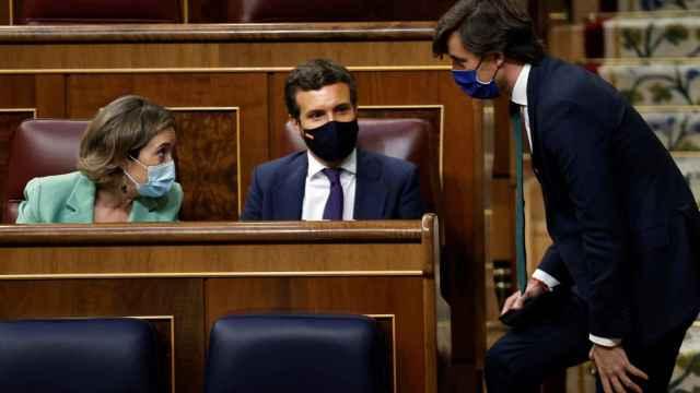 Pablo Casado, en su escaño durante el pleno de este miércoles.