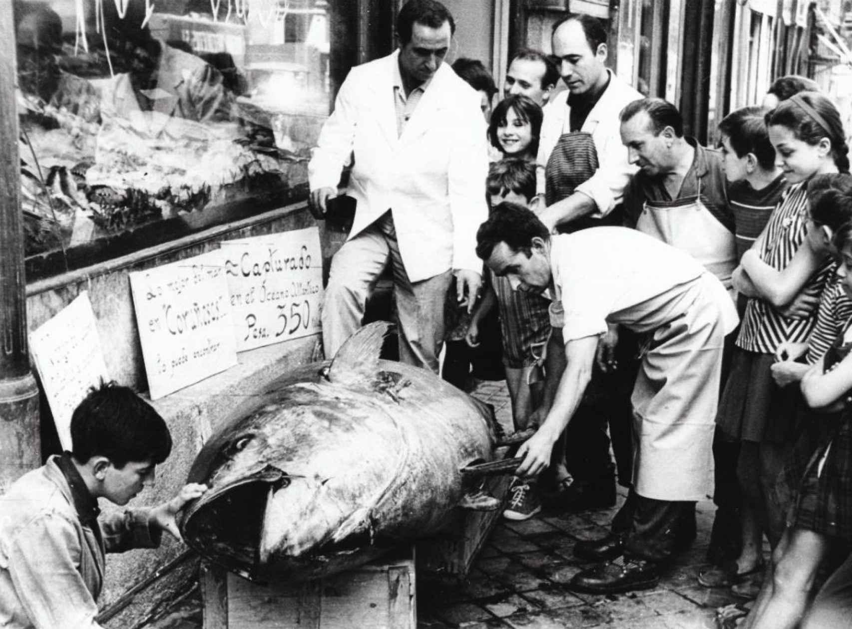 Atún 350 kg en Pescaderías Coruñesas.