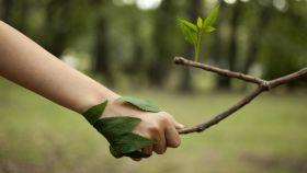 Representación de la inversión sostenible en un montaje.