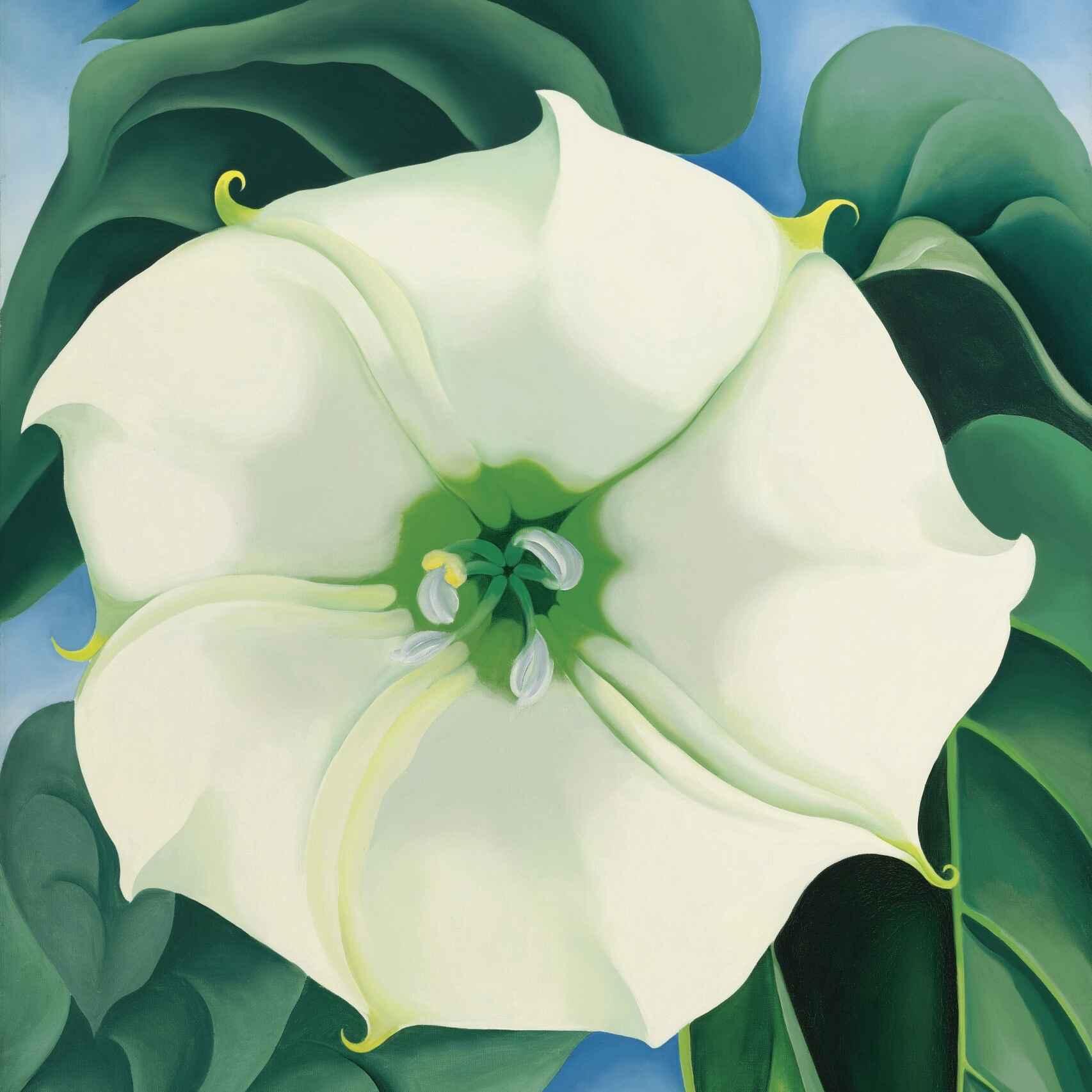 'Jimson Weed/Flor Blanca nº 1', pintada por Georgia O'Keeffe en 1932.