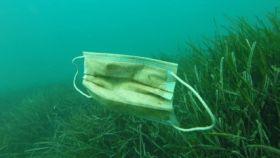 Mascarilla de plástico en el mar.