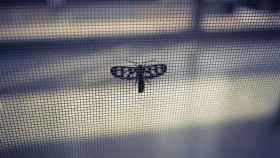 Soluciones para mantener tu casa libre de insectos esta temporada