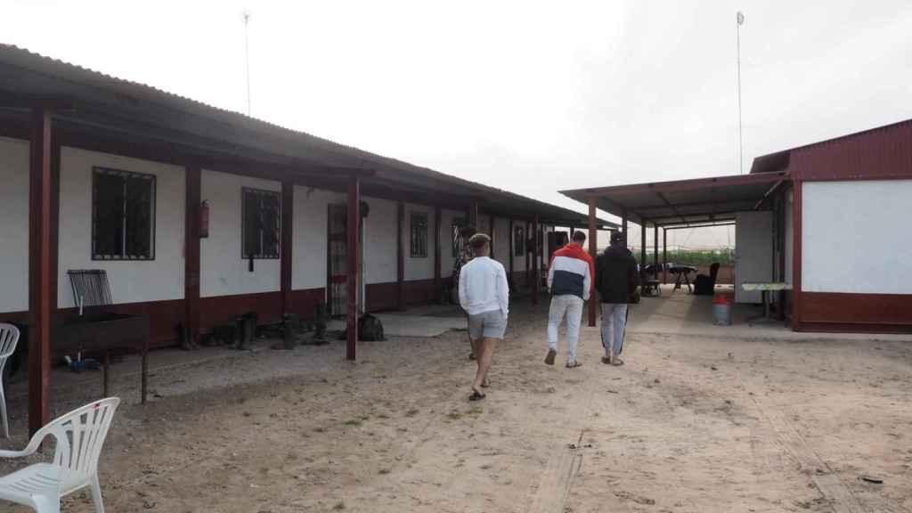 Este grupo de ocho jóvenes extutelados por la Administración conviven en barracones junto a una finca de fresas.