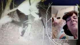 María Gil sobre una captura de pantalla de los vídeos que tomó a los menores implicados en la muerte de sus gatos.
