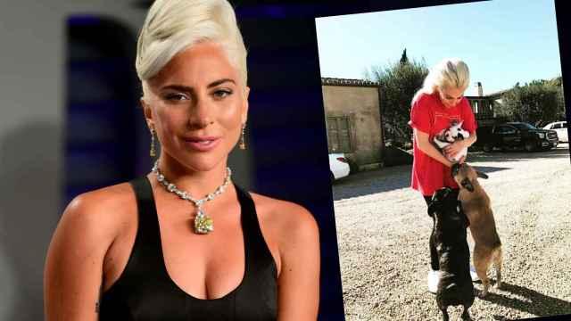 Lady Gaga sufrió mucho por la vida de su paseador de perros y sus canes la noche del 24 de febrero.