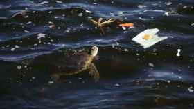 Imagen de archivo de contaminación plástica.