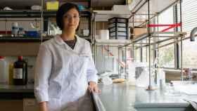 La doctora Judith Guasch en el laboratorio del Instituto de Ciencias de Materiales de Barcelona.