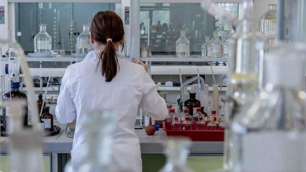 La UMH estudia el uso de compuestos marinos como potencial fármaco contra el cáncer