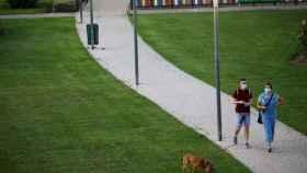 Una pareja pasea con su perro.