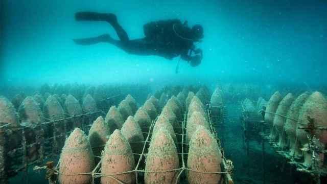 Las profundidades del océano aporta al vino matices diferenciadores.