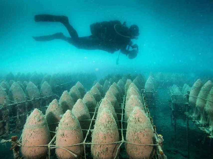 Las profundidades del océano aportan al vino matices diferenciadores.