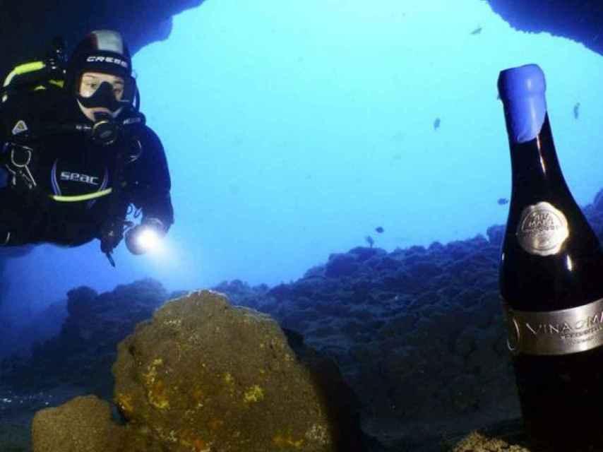 Vina Maris es una de las pocas bodegas que organiza expediciones de buceo.