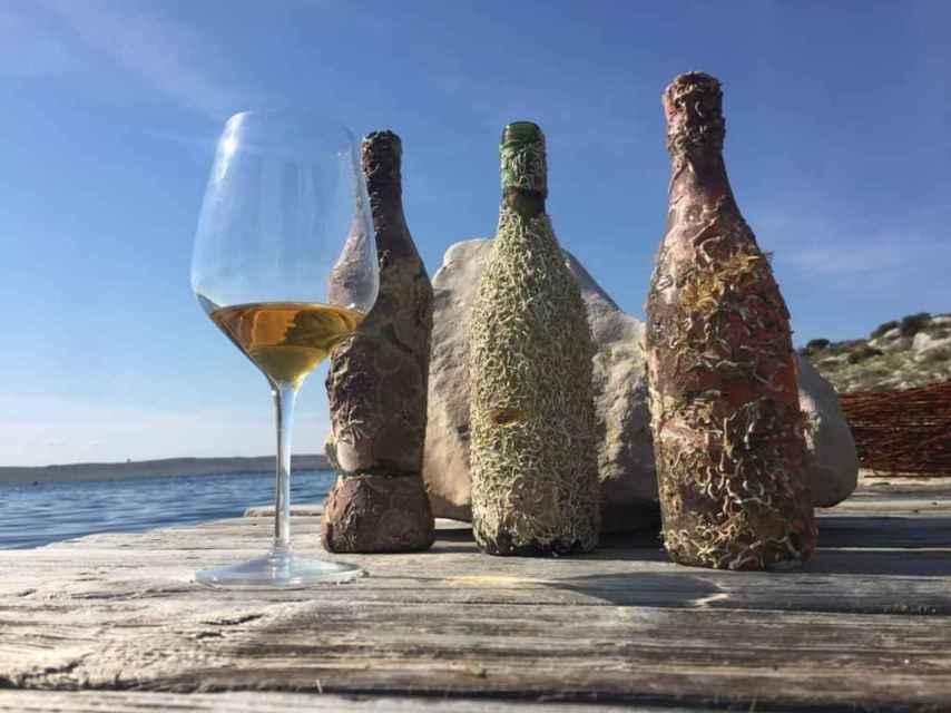 En Croacia también se envejecen vinos bajo el mar.