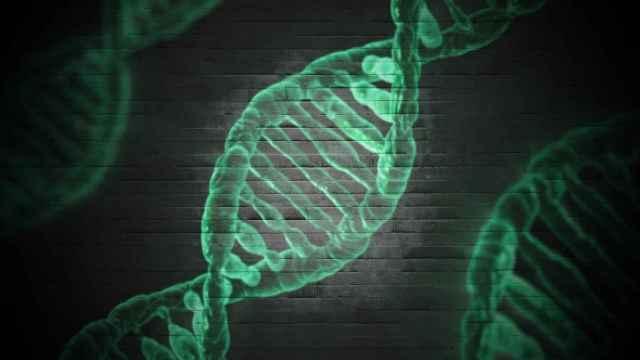 Representación gráfica de una cadena de ADN. IMAGEN: Pixabay