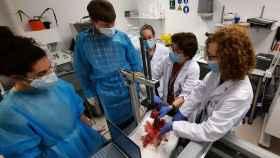 El equipo de investigación de Miwendo en sus laboratorios realizando una de las pruebas.