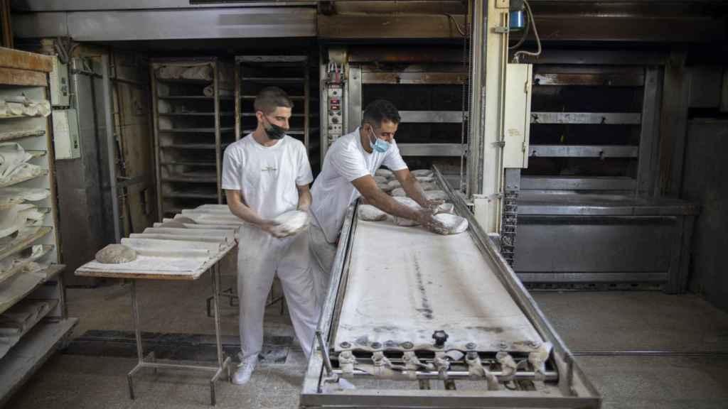 Dos trabajadores del obrador de Forno de Lugo, metiendo al horno el pan artesanal gallego recién amasado.