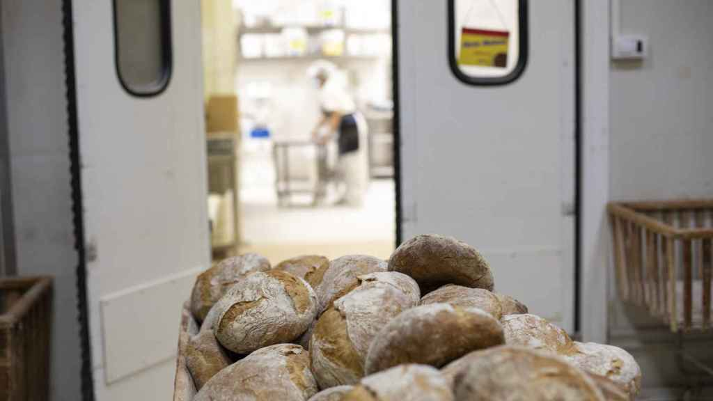 Los panes recién hechos en el obrador central de Forno de Lugo.