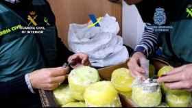Desarticulada una organización criminal que introducía cocaína dentro de piñas preñadas
