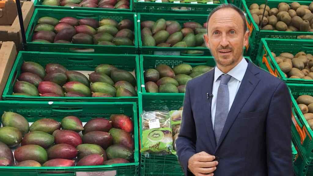 Enrique Colilles, gerente de Trops, una de las cooperativas que proveen a Mercadona de su mango.