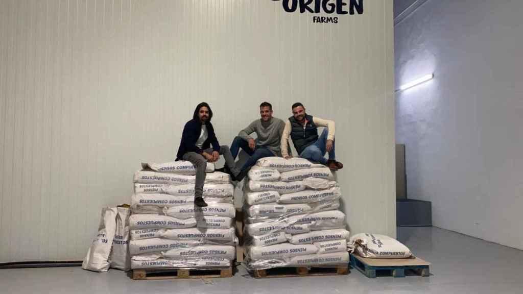 Los tres empresarios sobre los sacos de grillos de Origen Farms.