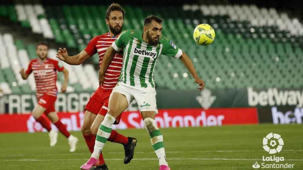 Borja Iglesias, durante el Betis - Granada de la jornada 35 de La Liga