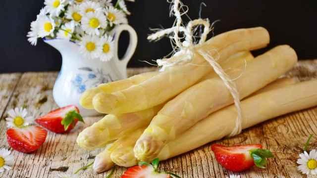 El espárrago, uno de los reyes de la agroalimentación navarra. FOTO: Pixabay.