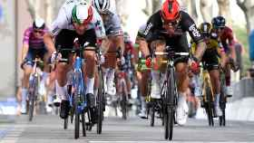Giacomo Nizzolo y Caleb Ewan, esprintando en la quinta etapa del Giro de Italia