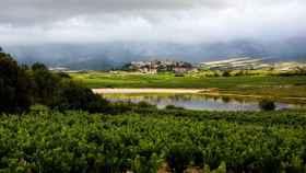 Laguardia, en la Rioja alavesa, es uno de los municipios encuadrados dentro de la D.O. FOTO: D.O. La Rioja.