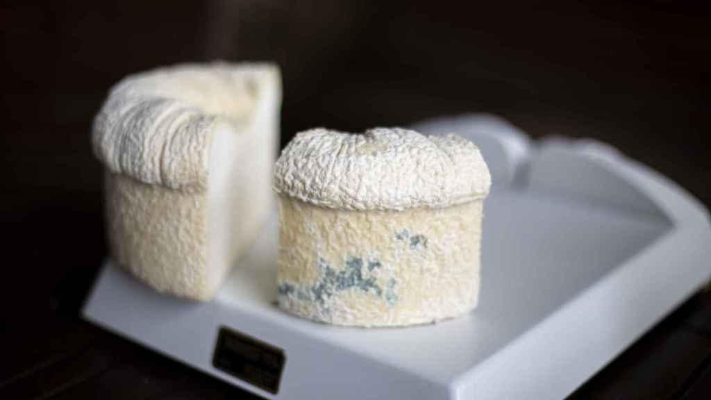 El queso D.O.P. Cebreiro madurado es un queso de origen medieval cuya receta se había perdido.