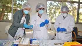 Alicante supera las 800.000 dosis suministradas de vacunas contra la Covid-19