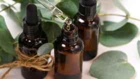 Aceite esencial de árbol de té: propiedades y para qué sirve.