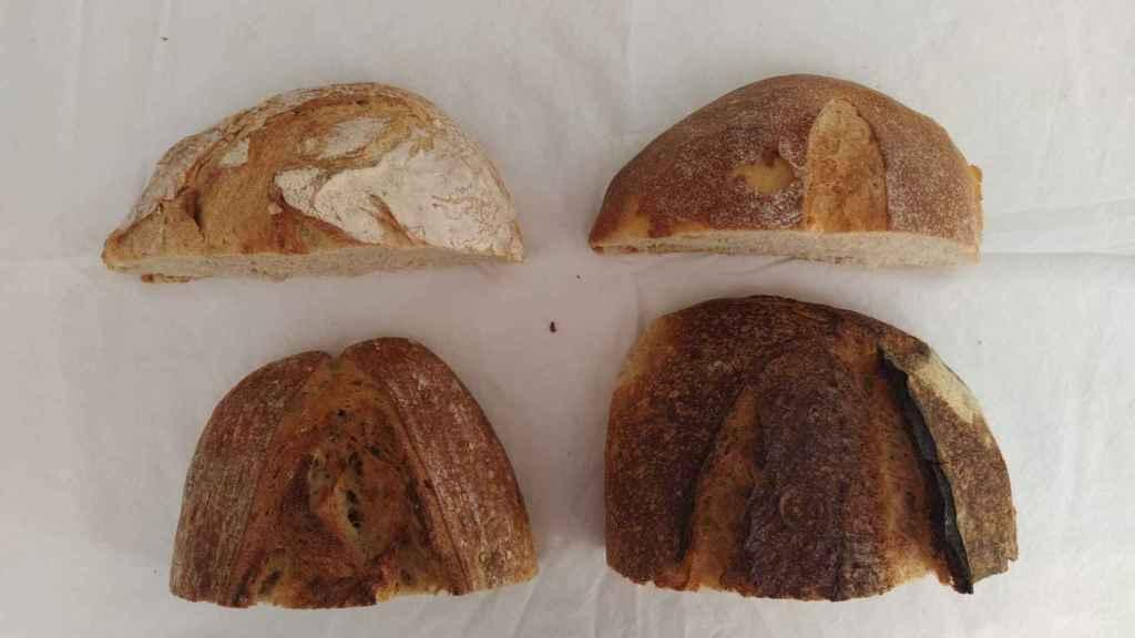 De arriba a abajo y de izquierda a derecha, las hogazas de las panaderías Pan.Delirio, John Torres, Obrador San Francisco y Ciento Treinta Grados.