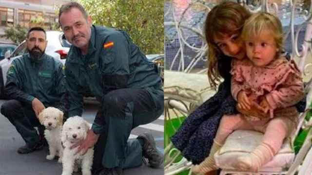 Junco (a la izquierda), uno de los perros que participan en el operativo de búsqueda de Anna y Olivia