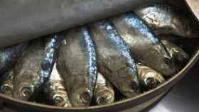 Las sardinas son uno de los pescados más ricos en grasas omega 3.