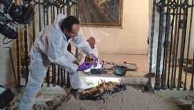 Un nuevo estudio de ADN ayudará a desvelar el origen de Cristóbal Colón.