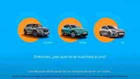 Mocean Madrid