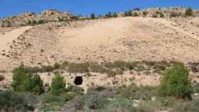 Vista frontal del arenal de Petrer.