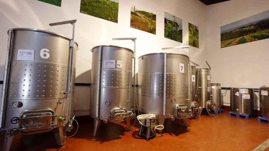 Sala de fermentación de Bodega Miradorio.