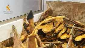 Intervenidos 63.100 envases de lomo y jamones con etiquetas manipuladas. Foto y vídeo GUARDIA CIVIL