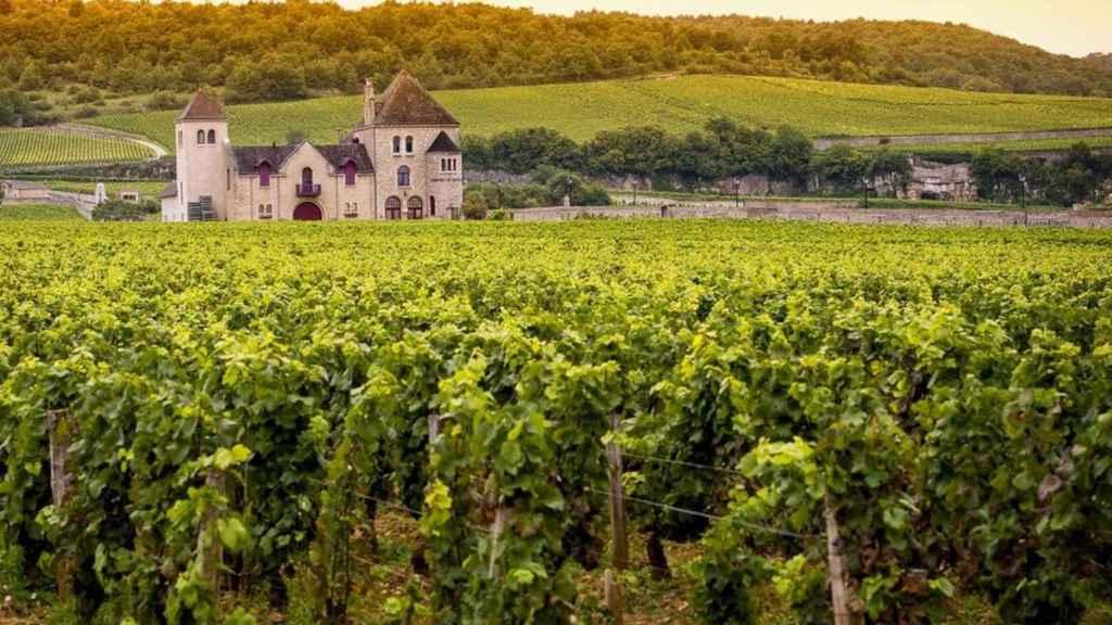 Bodega en la Borgoña.