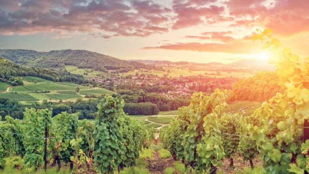 Puesta de sol en Borgoña.