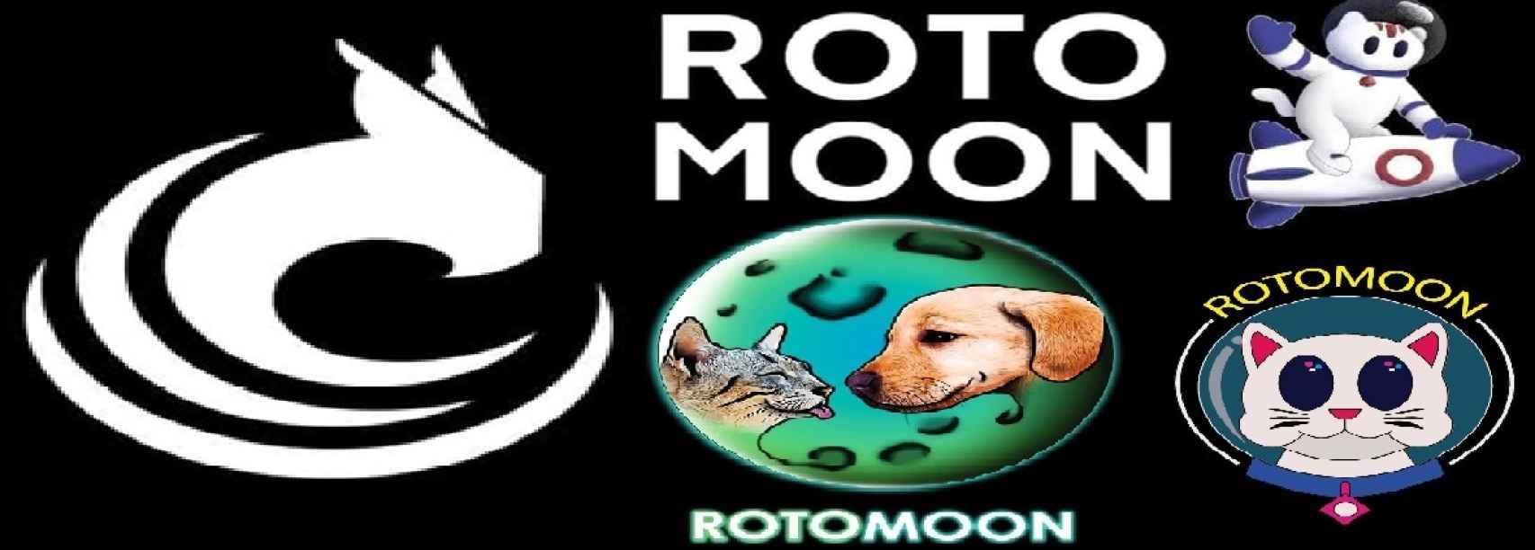 Propuestas de logotipo para el rotomoon, con el ganador a la izquierda.