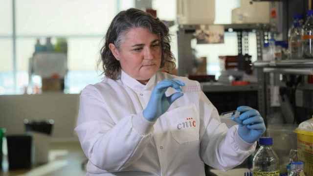 La investigadora Pilar Martín Fernández del CNIC