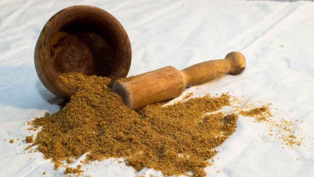 En Tebrio crían y transforman el gusano de la harina para su uso en diferentes industrias.